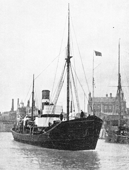 The Daisy, used as a minesweeper and a surveying vessel before transfer to the Fishery Protection Service