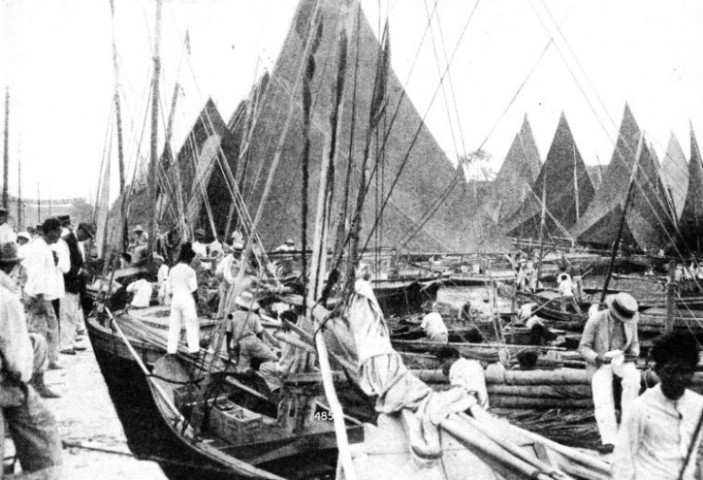 The sails of the fishing fleet in the Ver-o Peso Dock at Para on the Amazon